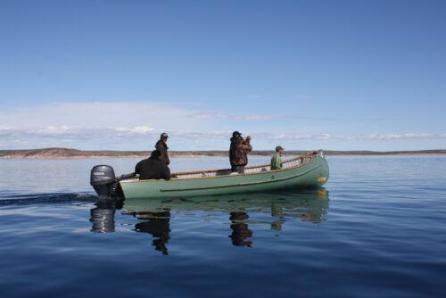 Naujaat Nunavut