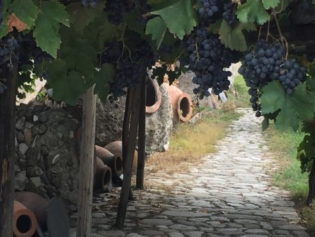 Qvevri, Georgian Wine