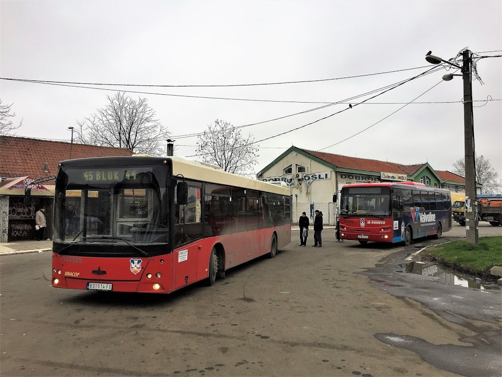 Two buses under starter's orders