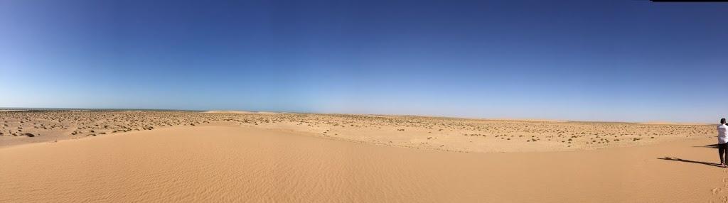 The Desert: Western Sahara