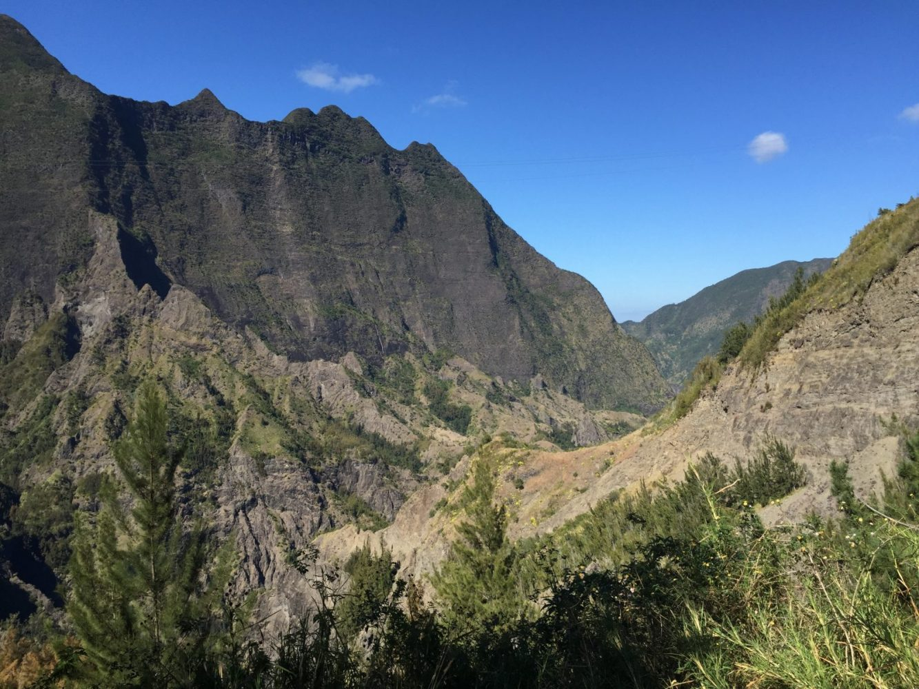 Reunion Island; What an amazing find !