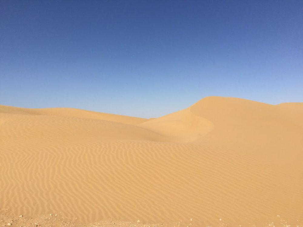 The desert - Western Sahara