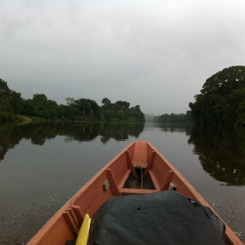 Exploring the Guyanas and the Upper Suriname River